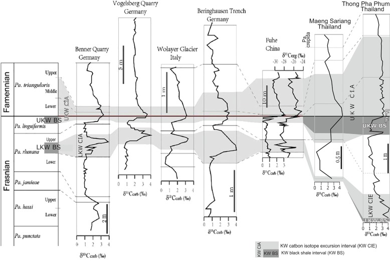 Diverse depositional and geochemical signatures of the