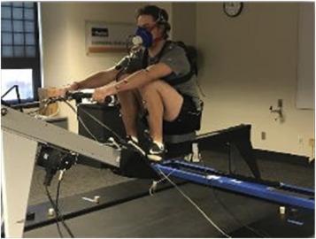 grăsime ars rower dieta e balancuar