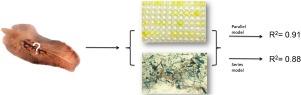 vermox szalagféregből hogyan lehet eltávolítani a férgeket tabletták segítségével