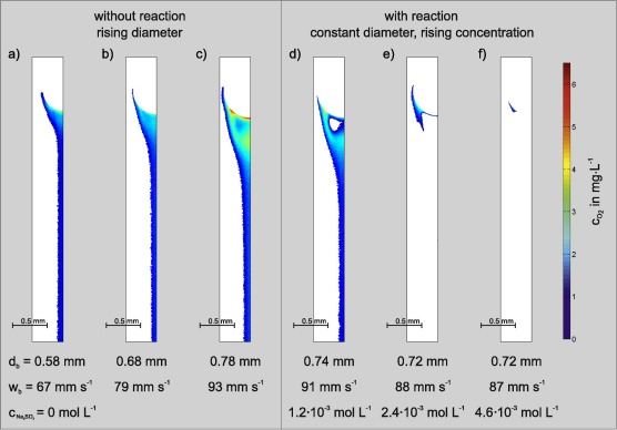 Experimental and numerical investigation of reactive species