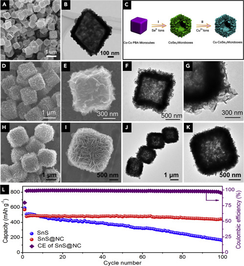 Nanostructured Electrode Materials for Advanced Sodium Ion