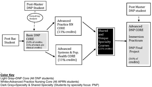 Re-Envisioning a DNP Program for Quality and Sustainability