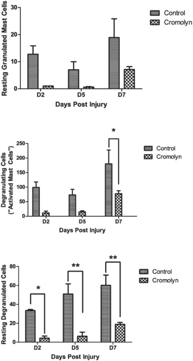 Mast cell inhibition as a therapeutic approach in fibrodysplasia