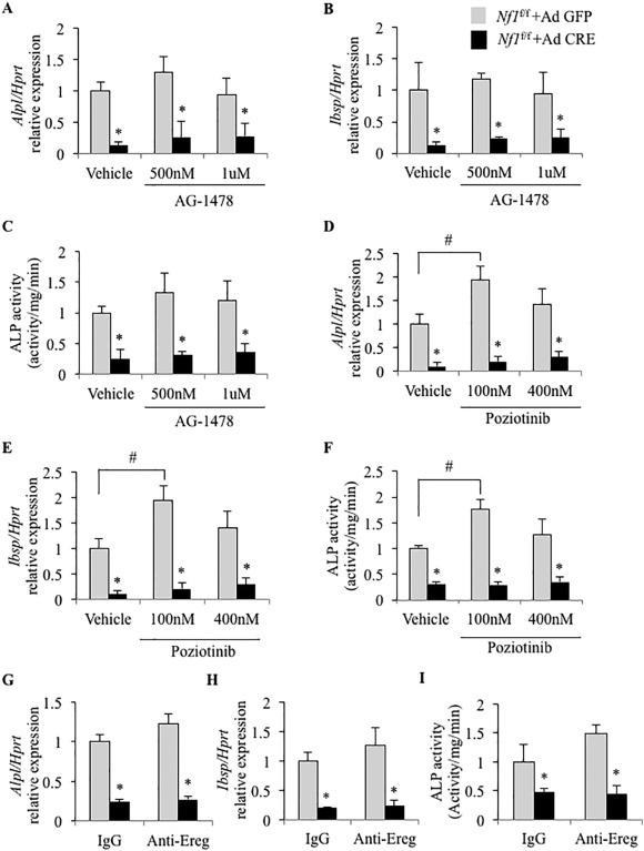 the reduced osteogenic potential of nf1 deficient osteoprogenitors rh sciencedirect com