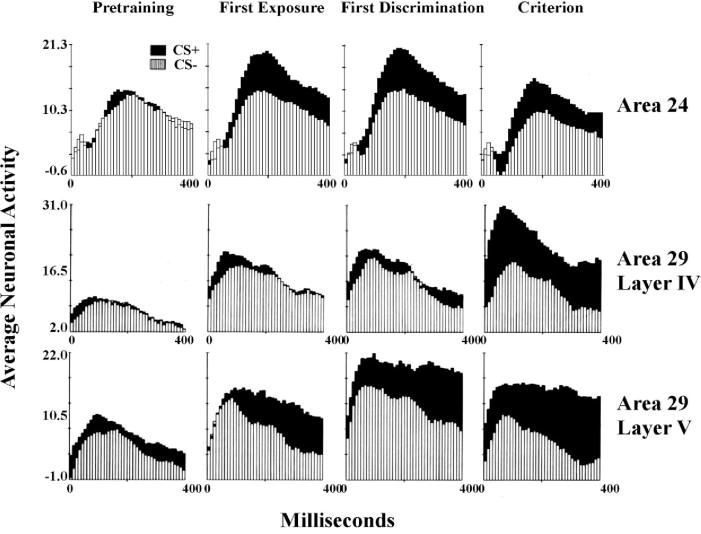 Behavioral Neuroscience An Overview ScienceDirect Topics