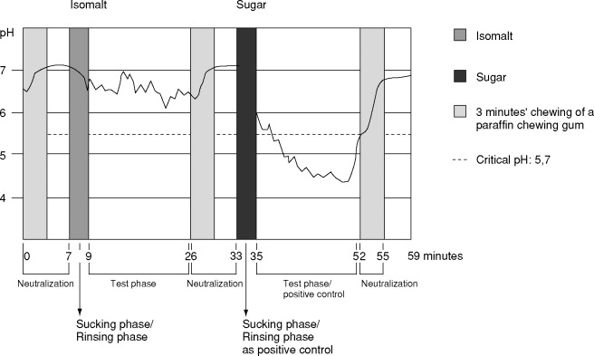 Chewing Gum - an overview | ScienceDirect Topics