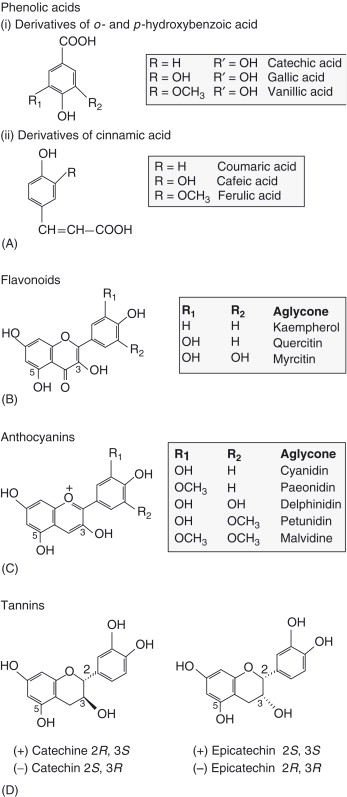 Permanganate - An Overview   ScienceDirect Topics