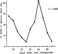 THE INDUCTION OF OESTRUS AND OVULATION IN SEASONALLY