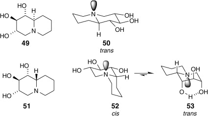 Fraxinus - an overview | ScienceDirect Topics