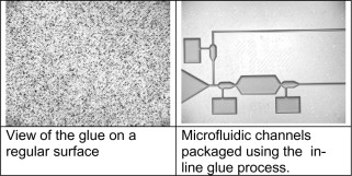 Glue - an overview | ScienceDirect Topics