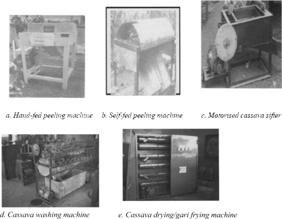 Developing Indigenous Machinery for Cassava Processing and