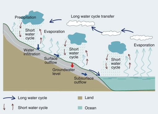 sign in to download full-size image  figure 3  the hydrologic cycle
