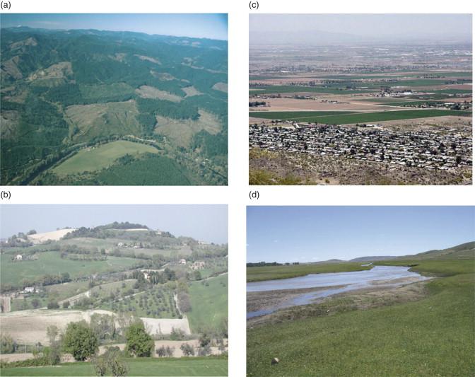Landscape Ecologists