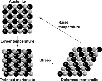Shape Memory Effect - an overview | ScienceDirect Topics