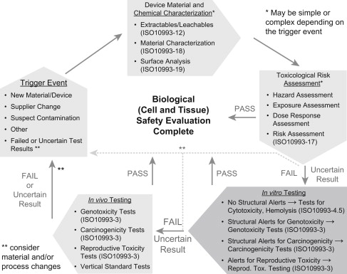 Toxicological Risk Assessment - an overview | ScienceDirect Topics