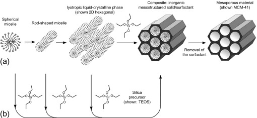 Mesoporous Silica - an overview | ScienceDirect Topics