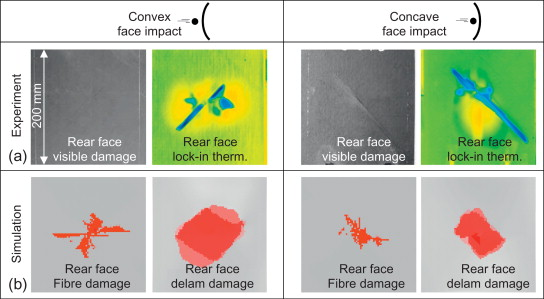 Convex Face - an overview | ScienceDirect Topics