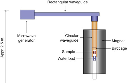 Measuring temperature distributions during microwave