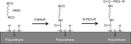 Polyethylene Oxides - an overview | ScienceDirect Topics