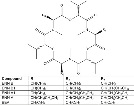 Fusarium Mycotoxins in Food - ScienceDirect