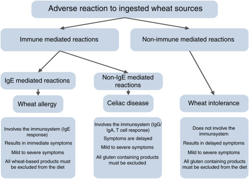 celiac disease onset after gluten free diet