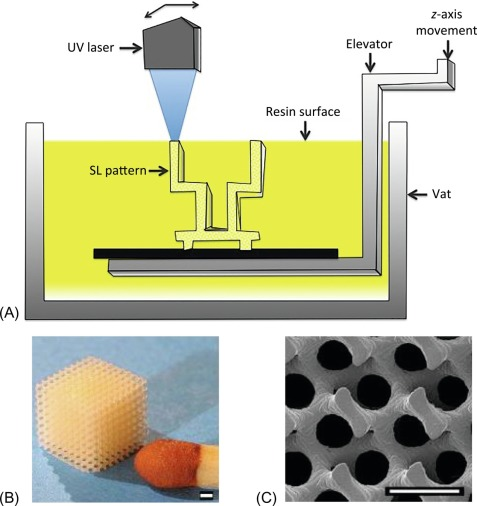 Stereolithography - an overview | ScienceDirect Topics