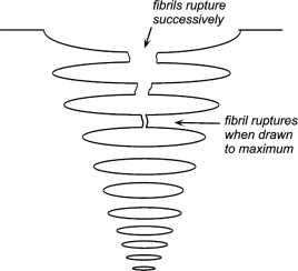 Drawing Process - an overview | ScienceDirect Topics