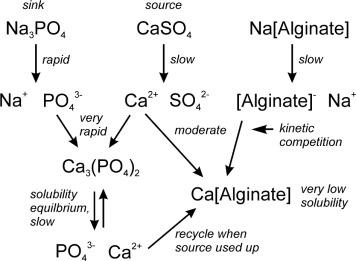 Potassium Salt - an overview | ScienceDirect Topics