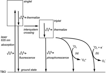 Hypochlorite - an overview | ScienceDirect Topics