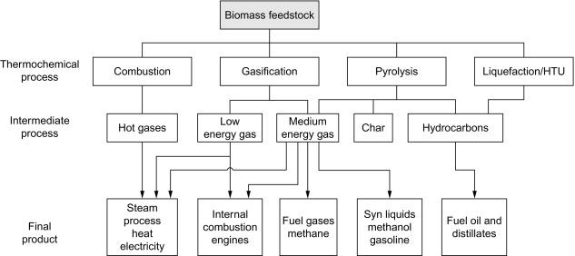 Biomass Conversion Technologies - ScienceDirect