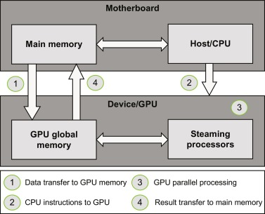 Graphics Processing Unit - an overview | ScienceDirect Topics