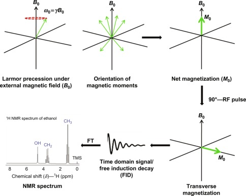 Characterization of Nanomaterials Using Nuclear Magnetic Resonance