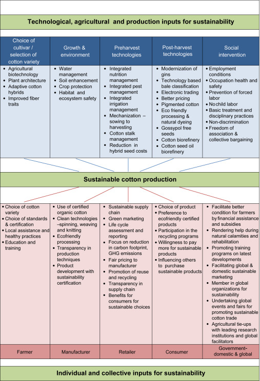 Sustainable cotton production - ScienceDirect