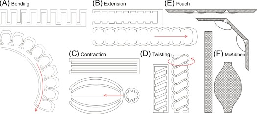 Fluid-driven intrinsically soft robots - ScienceDirect