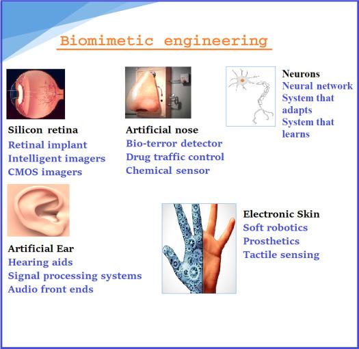 Sensor fusion and control techniques for biorehabilitation