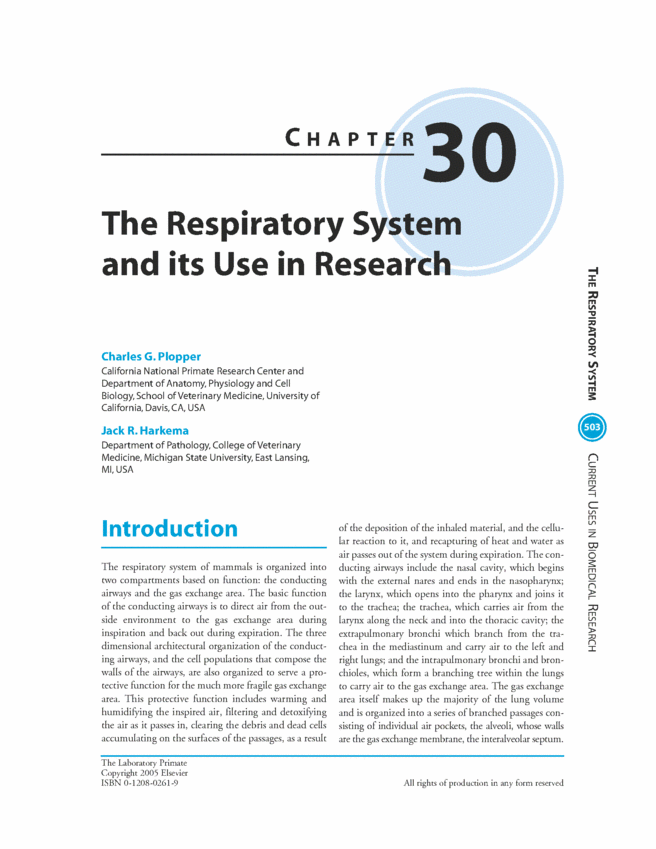 The Respiratory System and its Use in Research - The Laboratory ...