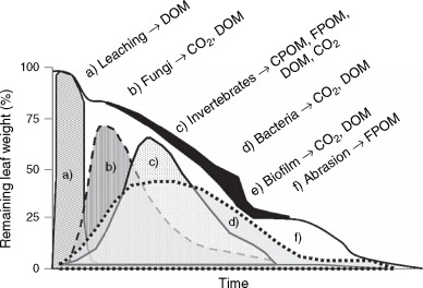 Decomposition of Organic Matter - an overview