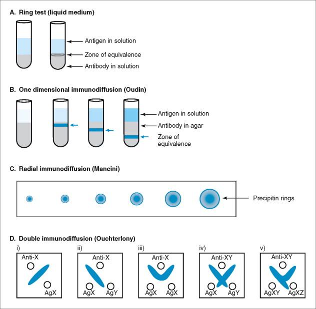 Precipitin - an overview | ScienceDirect Topics