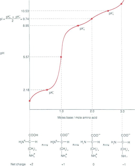 Zwitterions - an overview | ScienceDirect Topics