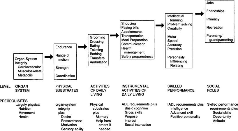 Functional Assessment In Geriatric Mental Health Sciencedirect