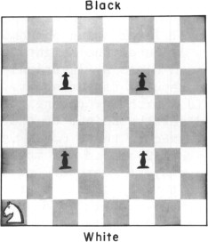 Manufacturer of the World's Finest Chess Products