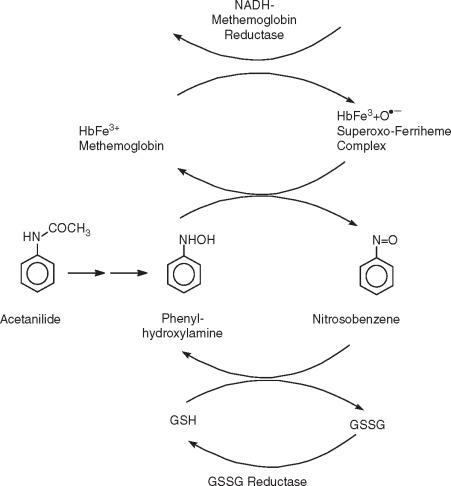 nitration of acetanilide mechanism