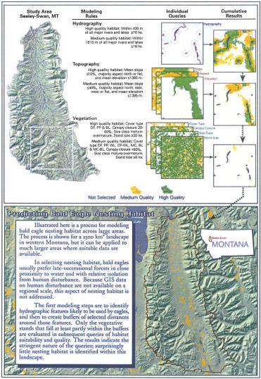 Wildlife Habitat - an overview | ScienceDirect Topics