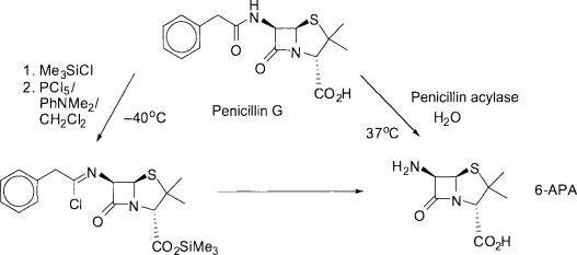 penicillin an overview sciencedirect topics