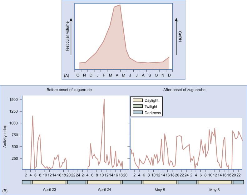 Zugunruhe - an overview | ScienceDirect Topics
