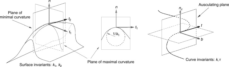 Principal Curvature - an overview | ScienceDirect Topics