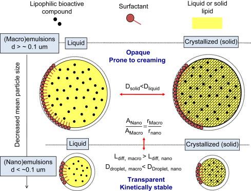 Functional Lipids - an overview | ScienceDirect Topics