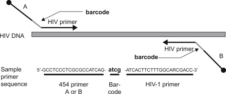 DNA Barcoding - an overview | ScienceDirect Topics