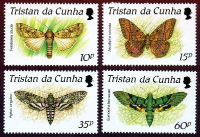 Cultural Entomology - ScienceDirect