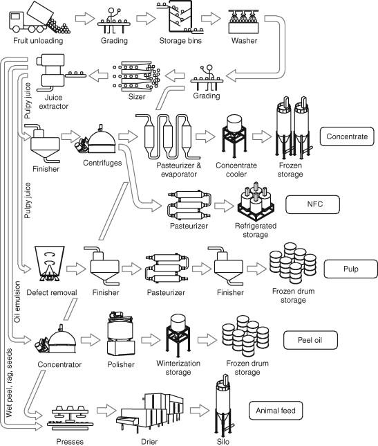 Block Flow Diagram - an overview   ScienceDirect Topics